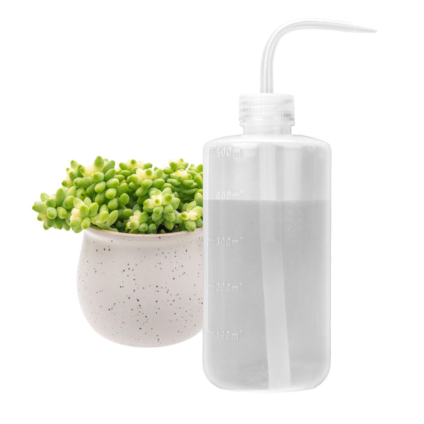 500mL Small Watering Can for Indoor House Plants Flower Succulent Bonsai Terrarium Seedling Orchid Cactus Violet LDPE Plastic Squeeze Safety Lab Wash Bottle Label Tattoo Device Precise Waterer-Free Shipping