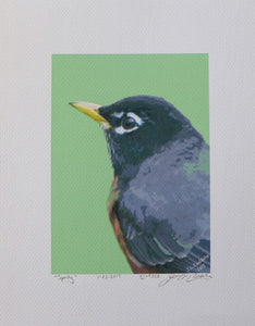 Robin portrait painting on coldpress, harbinger of spring, by Judy Link Cuddehe for Found Link Press.