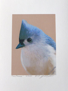 """Timid Titmouse"" Print"