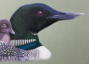 Detail of Loon portrait by Judy Link Cuddehe for Found Link Press.