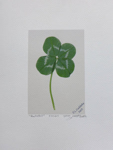 Quatrefoil, aHyper realistic four leaf clover print by Judy Link Cuddehe of Found Link Press.