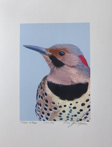 Flicker painting on coldpresd by Judy Link Cuddehe.