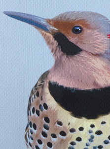 Flicker closeup. Print by Judy Link Cuddehe, Found Link Press.