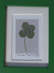 Closeup of Four Leaf Clover a print on coldpress paper, by Judy Link Cuddehe for Found Link Press.