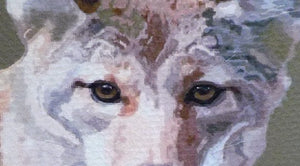 Detail of Coyote Print, by Judy Link Cuddehe.