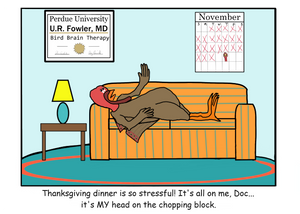 "Thanksgiving ""Turkey Therapy"" Card"