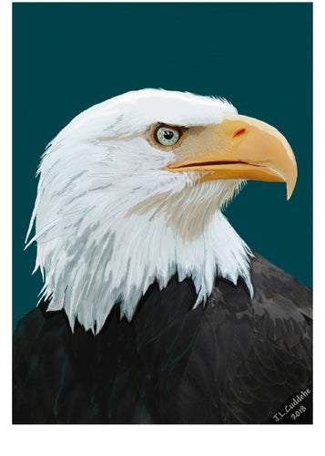 Eagle looking ahead print by Judy Link Cuddehe for Found Link Press, 2018.