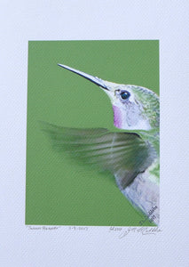 Ruby-Throated Hummingbird portrait painting on coldpress by Judy Link Cuddehe for Found Link Press.