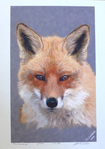 "Red Fox ""Scavenger"" Print"