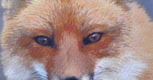 Detail of Red Fox painting by Judy Link Cuddehe for Found Link Press.