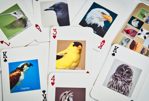 Bird Portrait Playing Cards