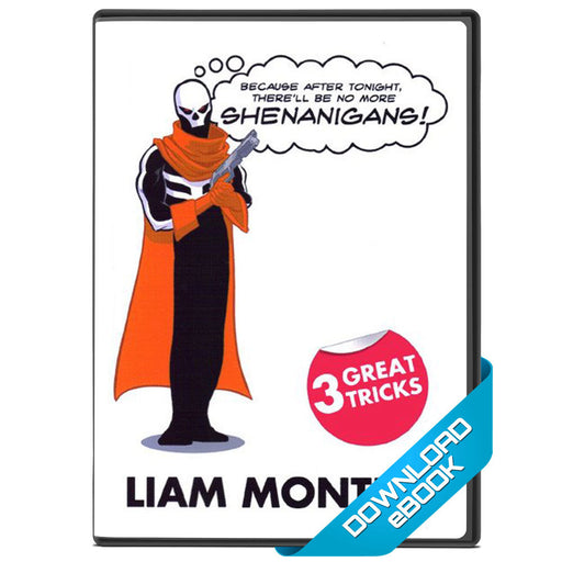 Shenanigans Ebook by Liam Montier