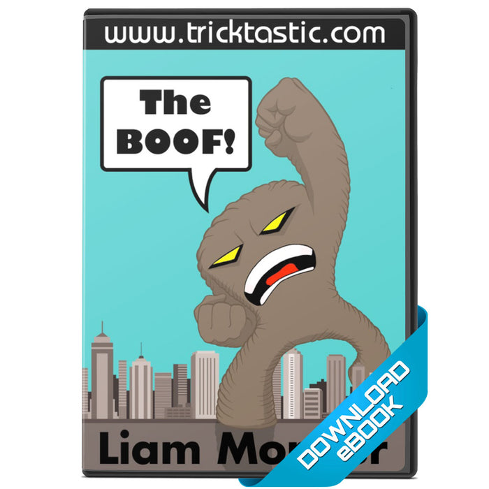 The BOOF! ebook by Liam Montier - bigblindmedia.com