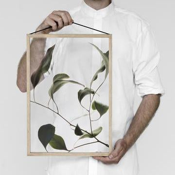 Durchsichtiges Poster 'Floating Leaves'