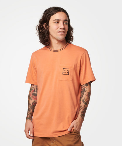 Stance T-shirts Cubed Burnt orange