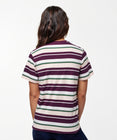Load image into Gallery viewer, Stance T-shirts Max Berry stripe
