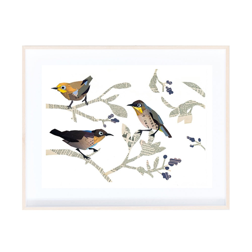Cape White-Eye Collage Print