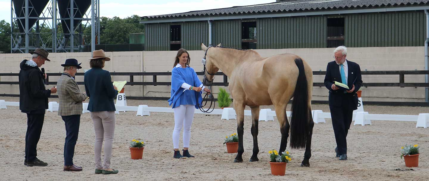 charlotte in the dressage arena at the horse championships in regatta blue cashmere poncho