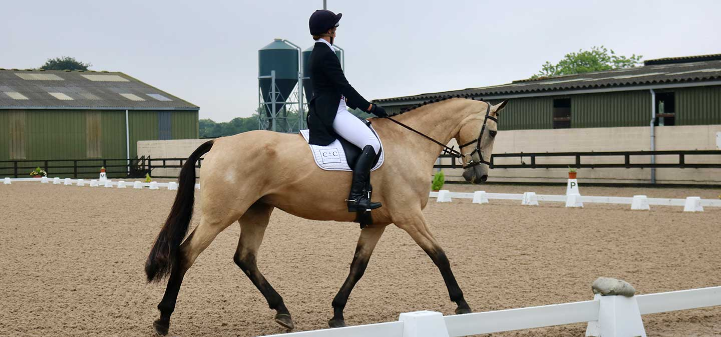 horse trial championships in the dressage arena