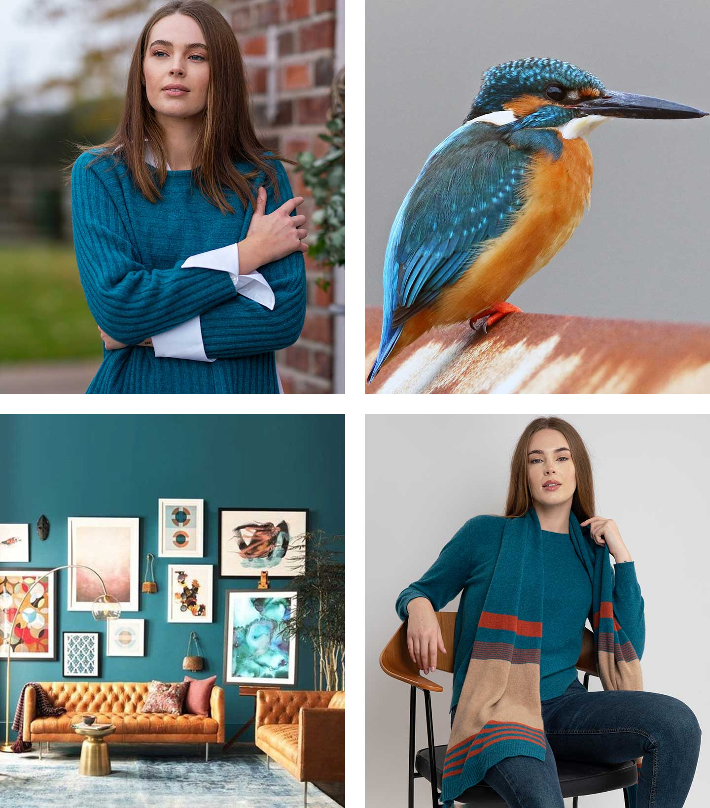 kingfisher mood board