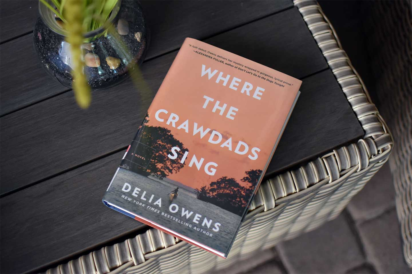 where the crawdads sing book front cover