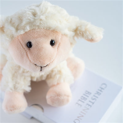 Cute Cuddly Lamb & Bible Christening Set - The Gift Cafe