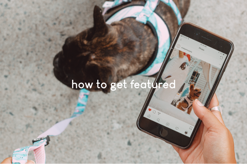 how to get featured on our facebook & instagram