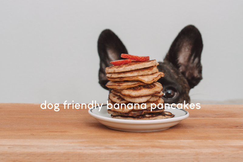 DIY Dog Friendly Banana Pancake Recipe