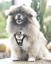Oink Reversible Dog Harness - Aztec White Print