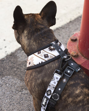 Oink Reversible French Bulldog Harness - Runnin' Wild