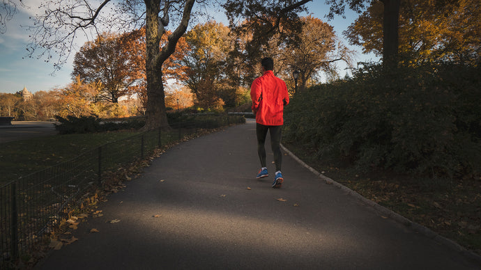 Runners: Fall Has Come!