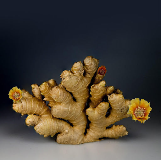 Tips For Taking Ginger Root For Nausea