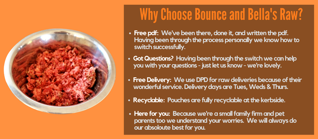 Why Choose Bounce and Bella for raw food?