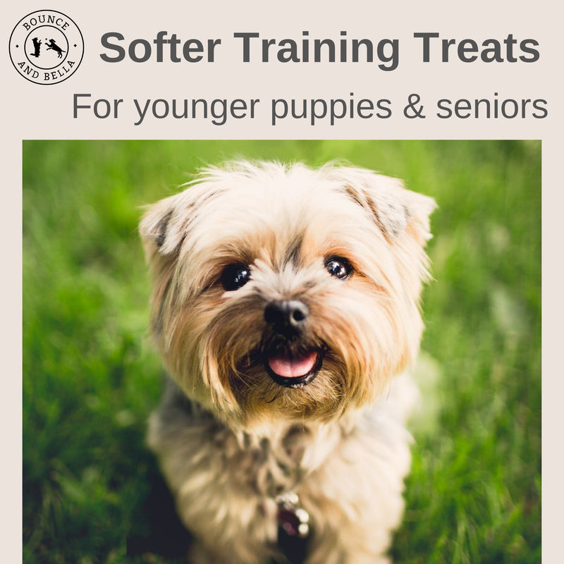 An infographic with an image of a young happy dog. Above is a text stating Softer Training Treats For Younger Puppies & Seniors.