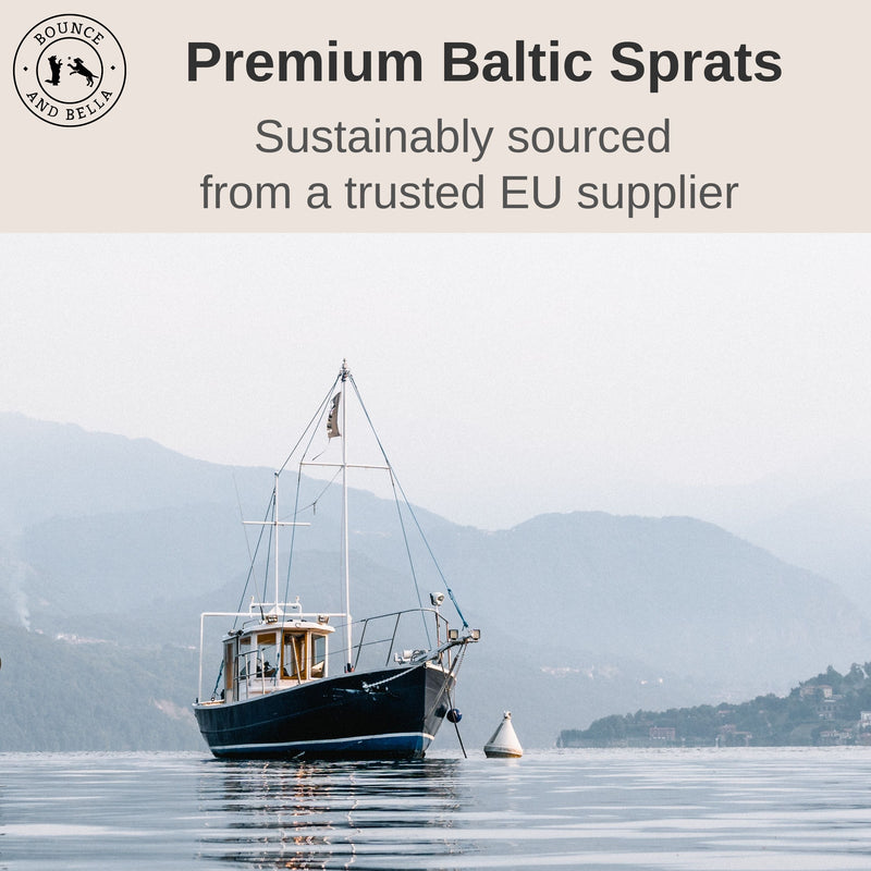Sprats Sustainably Sourced Infographic. The main image is of a ship in water with a banner above stating: Premium Baltic Sprats. Sustainably sourced from a trusted EU supplier.