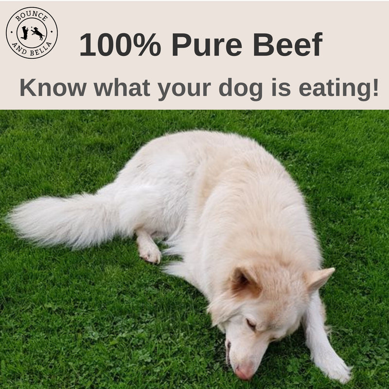 100% Pure Shin Beef Tasty and Natural Dog Chews
