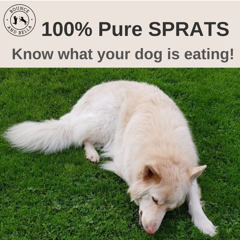 100% Sprats Dog Treats – Premium Baltic Sprats -  Sourced Sustainably