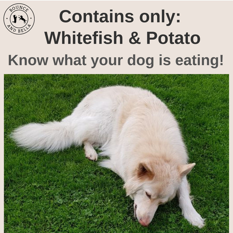 Low fat dog treats - whitefish and potato pet parent treats - only 2 ingredients -
