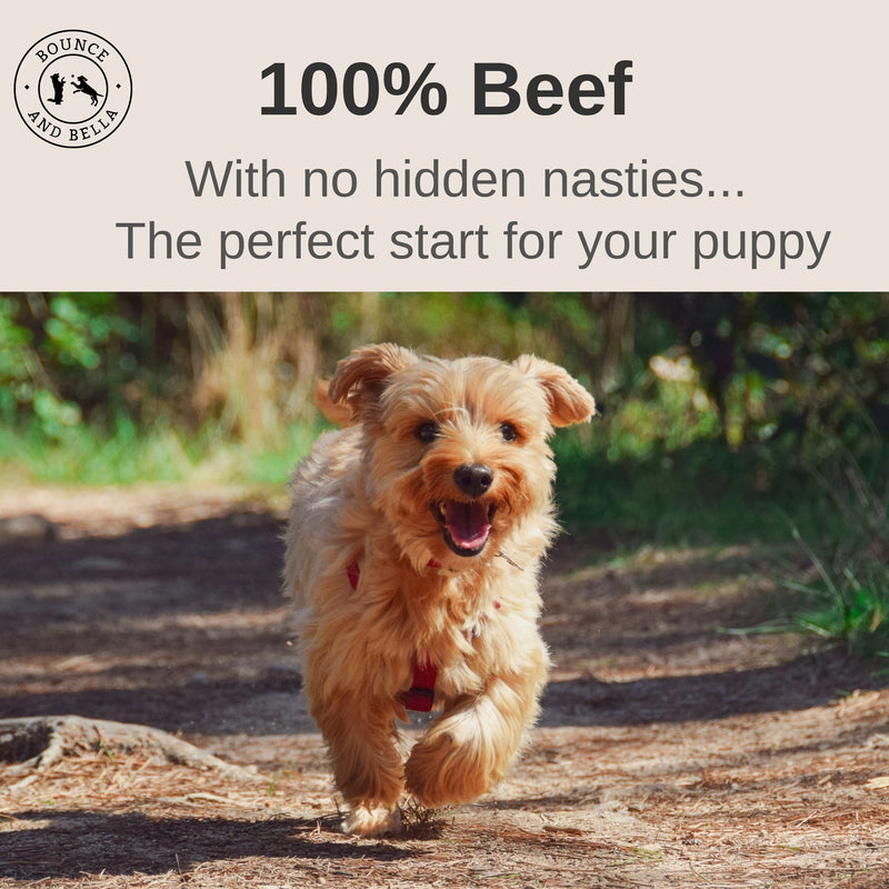 An Infographic with the main image of a young puppy running along a path. Above the image is a banner stating 100% Beef. With no hidden nasties… The perfect start for your puppy.