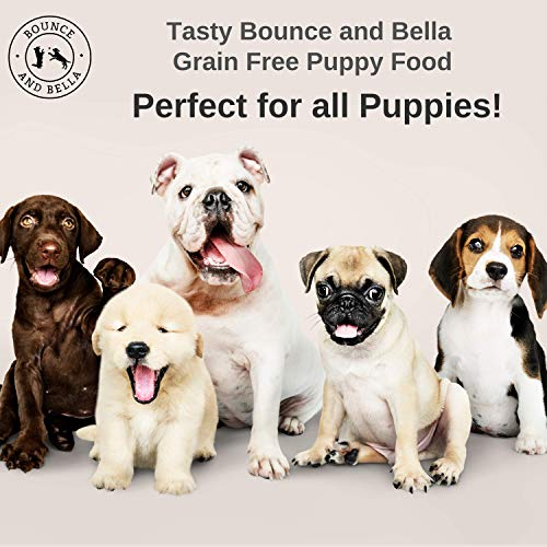 FREE SAMPLE - Complete Grain Free PUPPY Food - Chicken, Turkey & Salmon