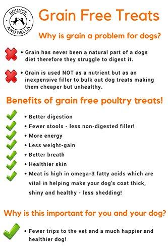 An Infographic detailing why Grain-Free Treats are so healthy. Information includes: Why Grain is a problem for dogs - Grain is not a natural part of a dog's diet and it isn't nutritious for dogs but used by big companies as a filler ingredient.  The Benefits of Grain-Free Treats include Better Digestion, Fewer Stools, More Energy, Less-Weight Gain, Better Breath, Healthier Skin, Better for your Dog's Coat.