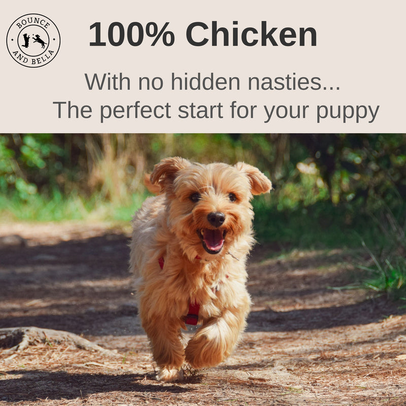 An infographic with an image of a dog running down a path. Above is a transparent banner stating 100% Chicken with No Hidden Nasties - The Perfect Start for your Pup!
