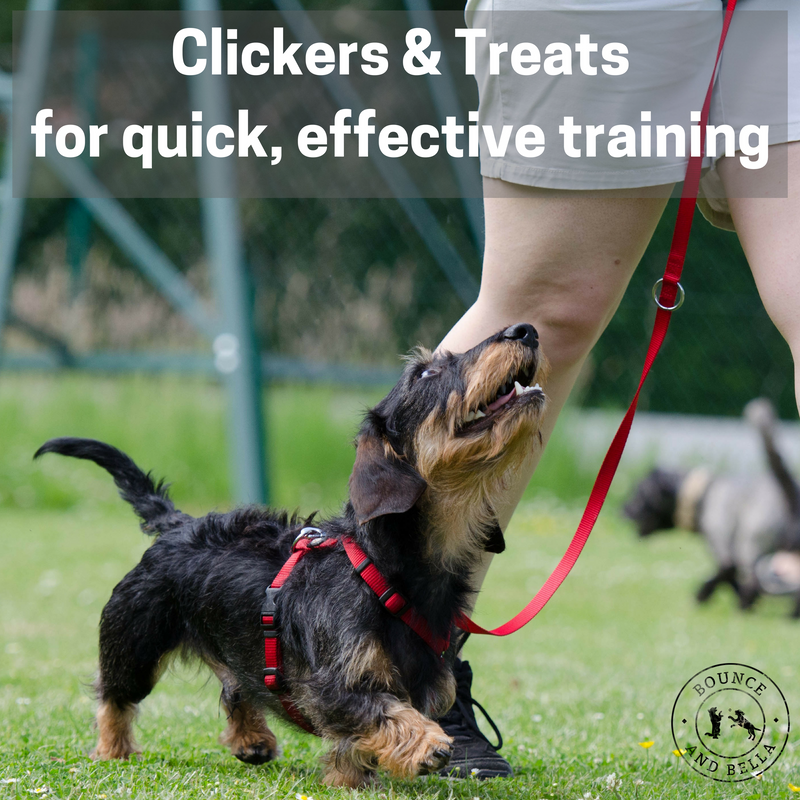 Dog Clicker with Fish Treats for Training