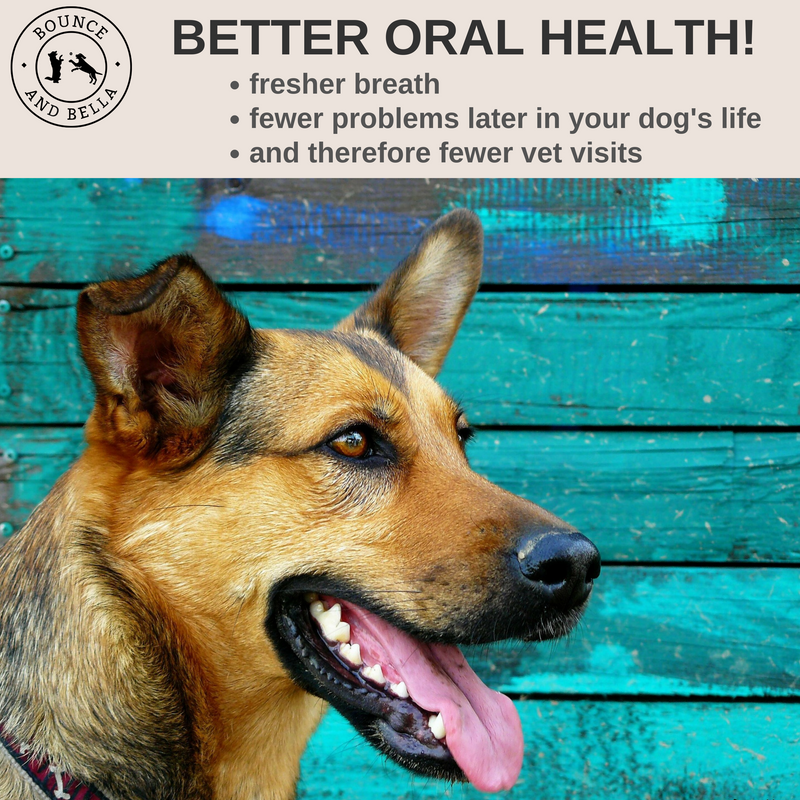 Dog Breath Freshener & Dental Care