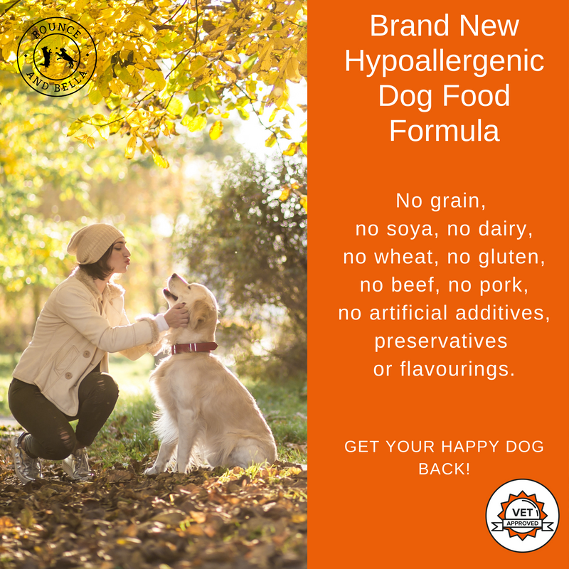 FREE SAMPLE - Complete Grain Free Dog Food - Delicious Venison, Salmon & Mulberry