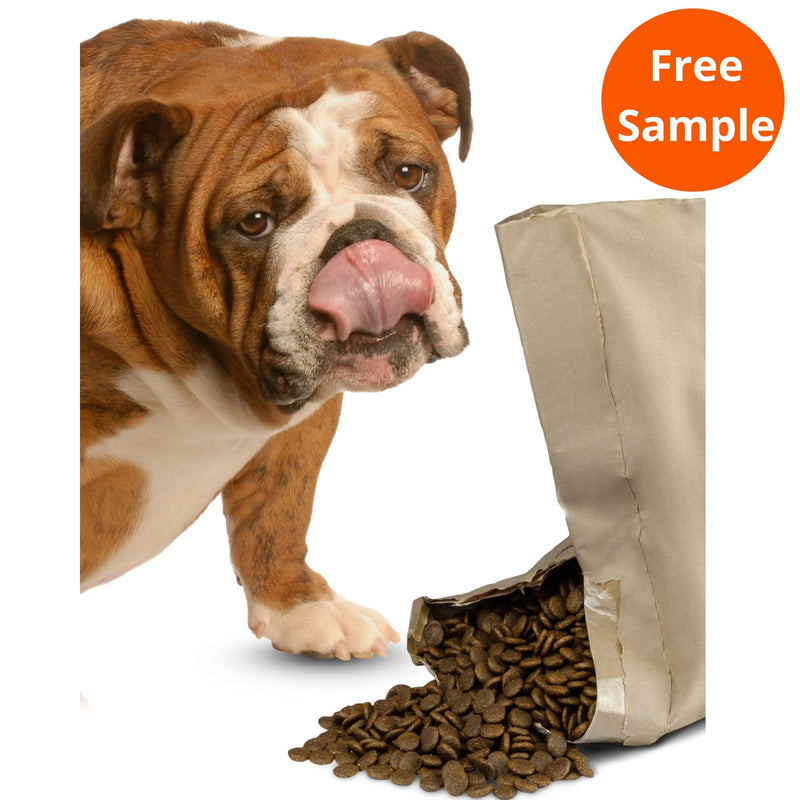 An English Bulldog standing beside an open bag of Irresistible Angus Beef Grain-Free Complete Dog Food. The bag is open slightly with the dog food spilling out and the Bulldog licking its nose. Complete Grain-Free Dry Dog Food 95% Irresistible Angus Beef plus 5% Added Goodness... for Pet Parent Peace of Mind