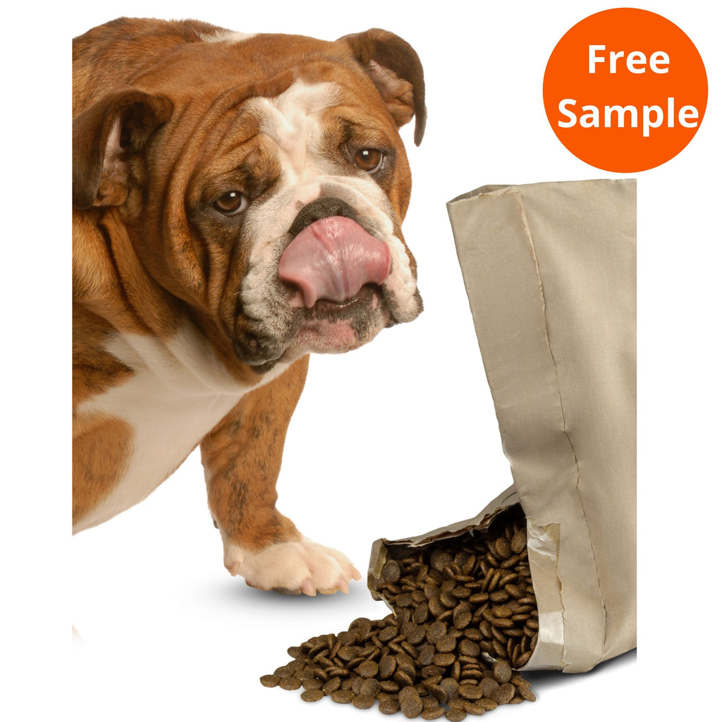 An English Bulldog standing beside an open bag of Duck, Orange & Veg Grain-Free Complete Dog Food. The bag is open slightly with the dog food spilling out and the Bulldog licking its nose. Complete Grain-Free Dry Dog Food 95% Duck, Orange & Veg plus 5% Added Goodness... for Pet Parent Peace of Mind