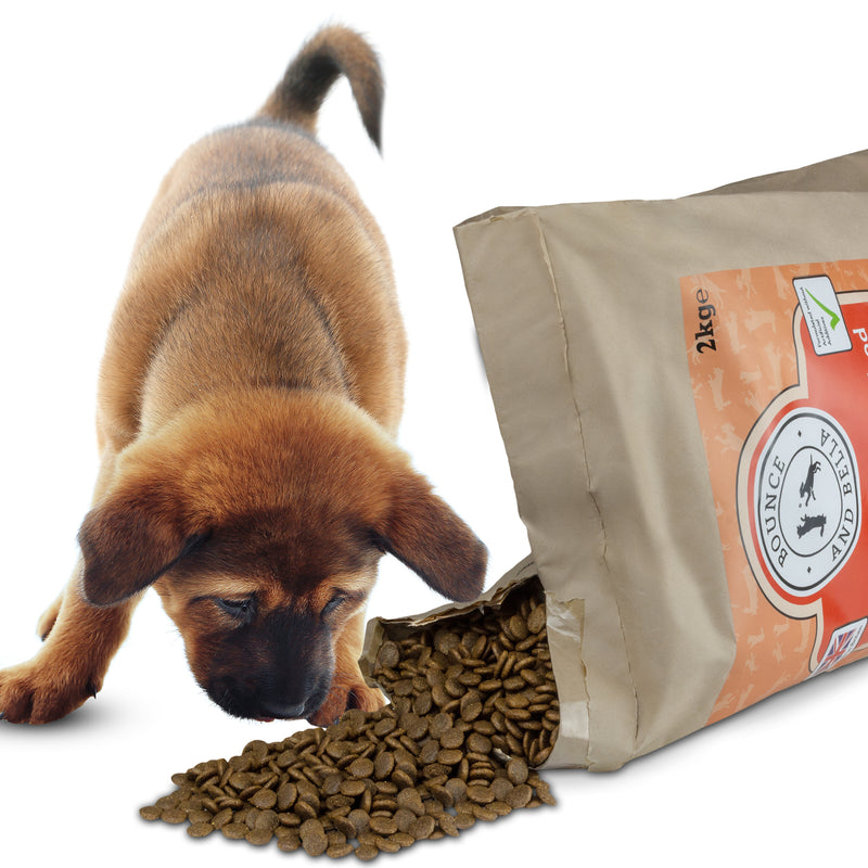 A small puppy beside an open bag of Chicken, Turkey and Salmon Grain-Free Complete Dog Food. The bag is open slightly with the dog food spilling out and the puppy leaning down to take a bite.