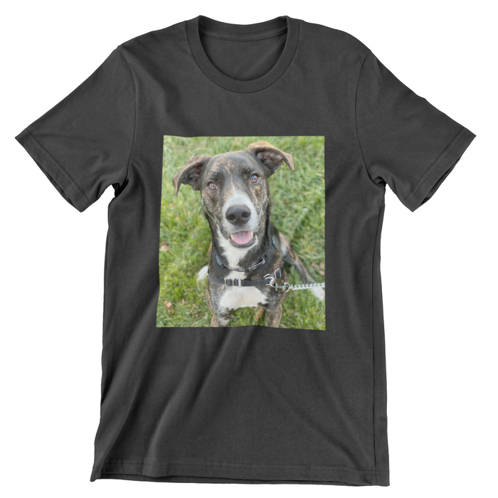 German Shepard Custom Print