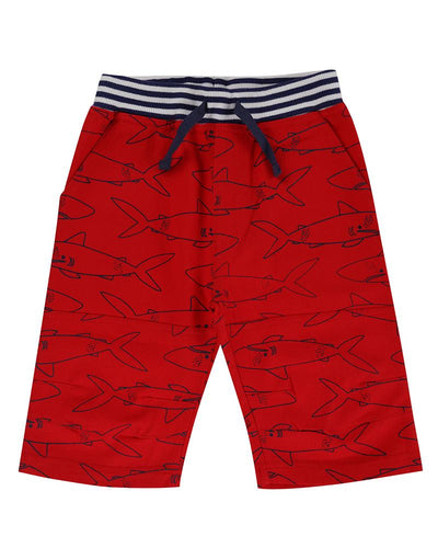 Lilly And Sid Printed Board Shorts- Sharky - The Thrifty Stork